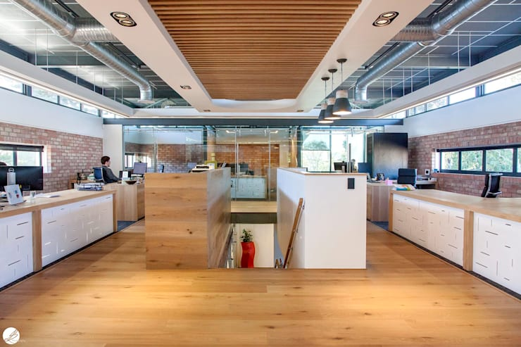 Open plan Office:  Office buildings by DMV INTERIOR DESIGN, Modern Wood Wood effect