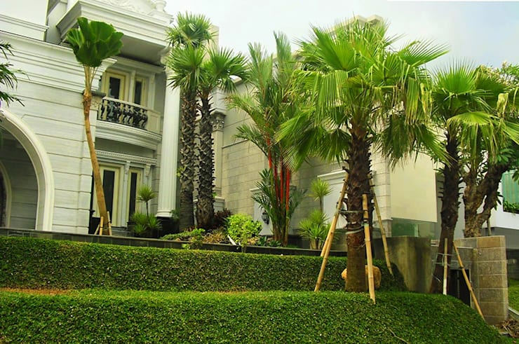 Tukang Taman Mewah Surabaya: Taman zen oleh Tukang Taman Surabaya - flamboyanasri, Modern