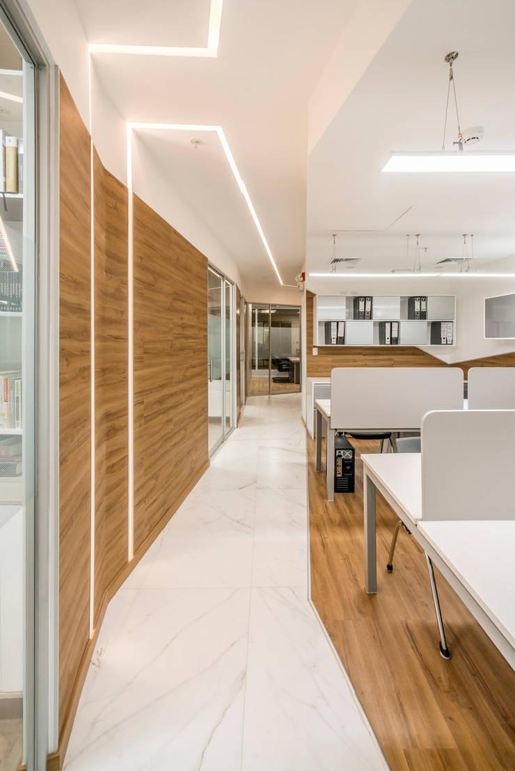 Oficinas y Tiendas de estilo  por Baum Studio, Moderno