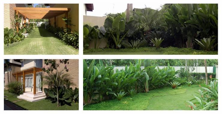 Projeto residencial por Prato Arquitetura e Paisagismo Tropical