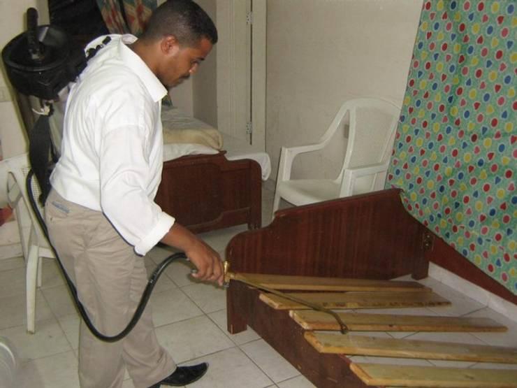 شركة مكافحة حشرات شمال الرياض0507719298:   تنفيذ شركة تنظيف ومكافحة حشرات ونقل عفش شمال الرياض0507719298