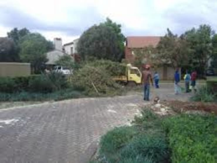Tree Cutting Services: industrial  by Tree Felling Group, Industrial