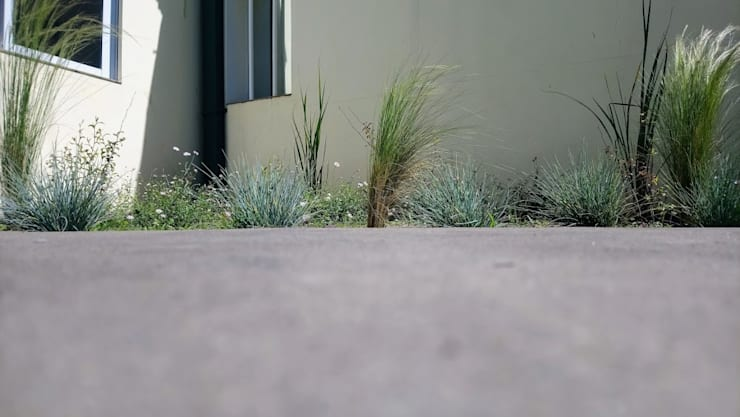 plantacion:  de estilo  por LOS BROTES JARDIN,