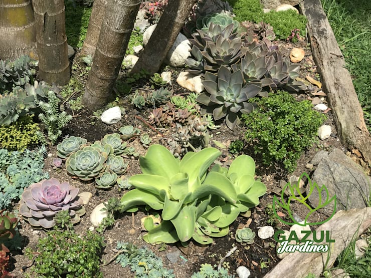 Jardines a tu medida: Jardín de estilo  por Gazul Jardines