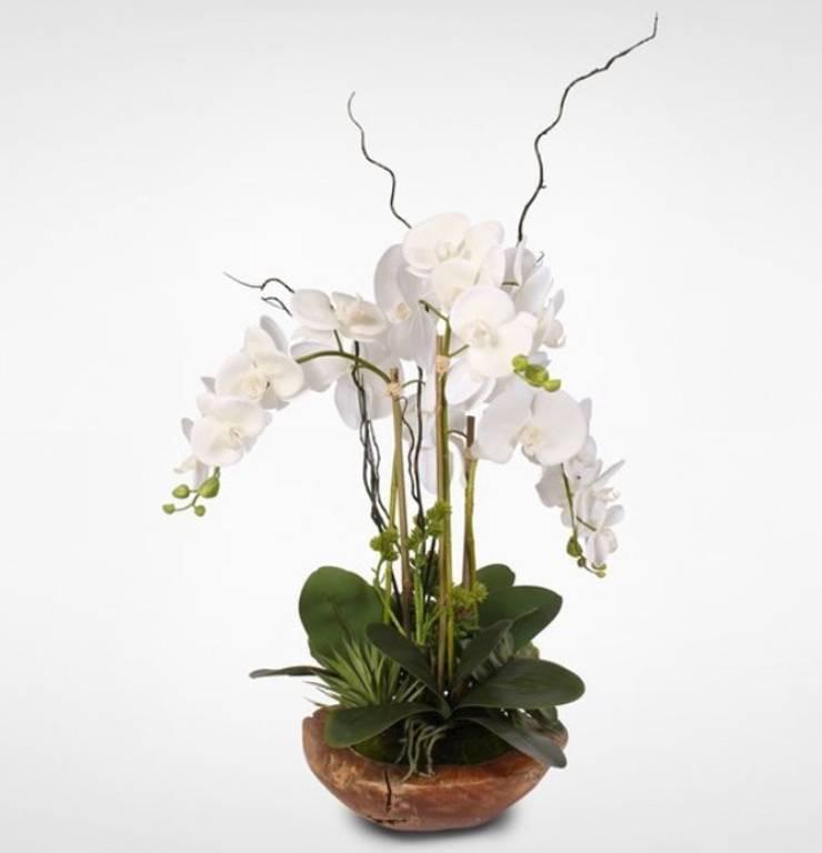 Arreglo floral: Salas/Recibidores de estilo  por Shirley Palomino