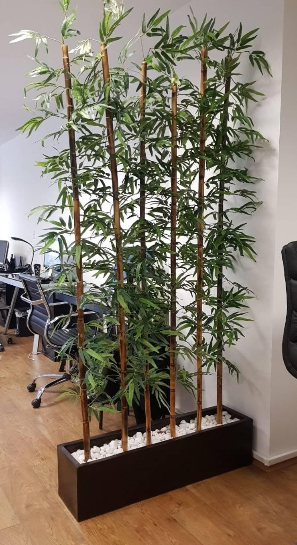 Decoración de oficinas con plantas de interior de Inova Decora ...
