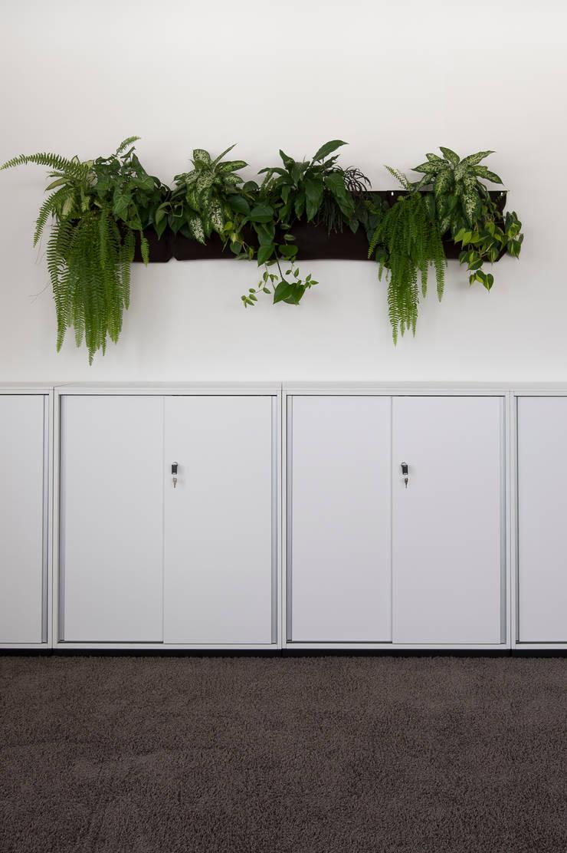 Raumbegrünung als Wandgestaltung :  Bürogebäude von Kaldma Interiors - Interior Design aus Karlsruhe,