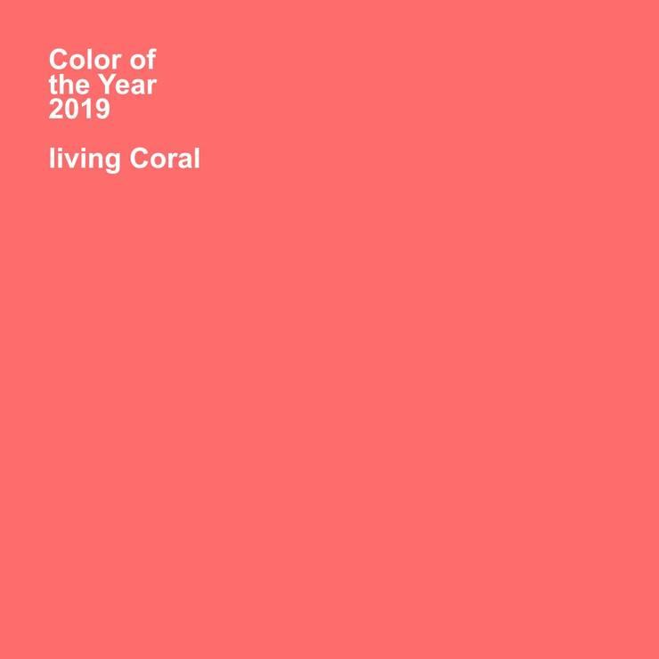 Estudio Coral: Oficinas y Tiendas de estilo  por Pragma - Diseño, Moderno