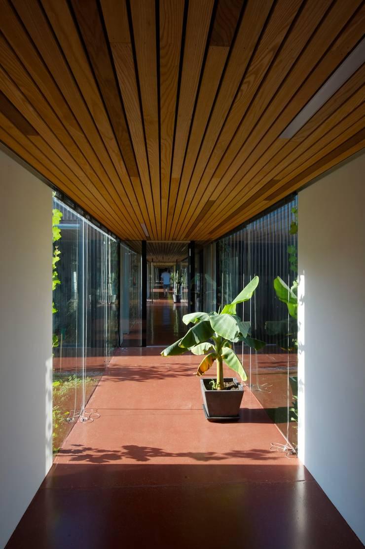 Modern Corridor, Hallway and Staircase by Franz&Sue Modern Wood Wood effect