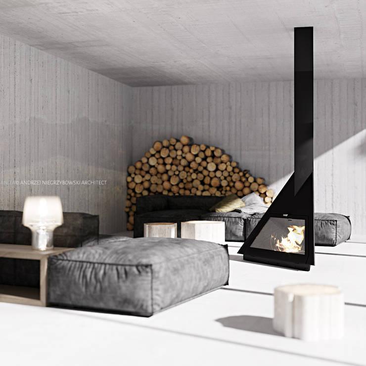 lewitująca chata kaszubska: styl , w kategorii  zaprojektowany przez ANIEA Andrzej Niegrzybowski architekt