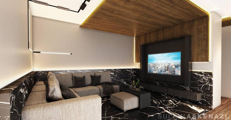 Media room by Sulkin Askenazi