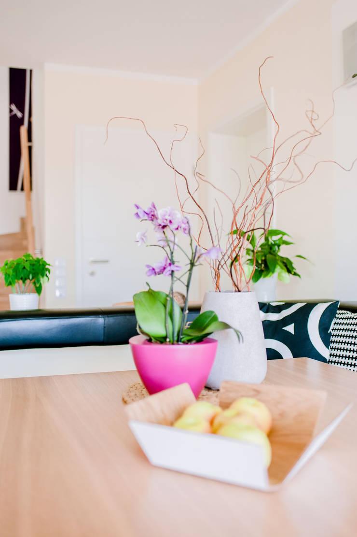 Immer die passende Dekoration Moderne Esszimmer von T-raumKONZEPT - Interior Design im Raum Nürnberg Modern