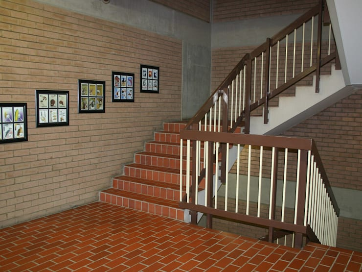 Before: Old-fashioned staircase.:  Office buildings by Nuclei Lifestyle Design,