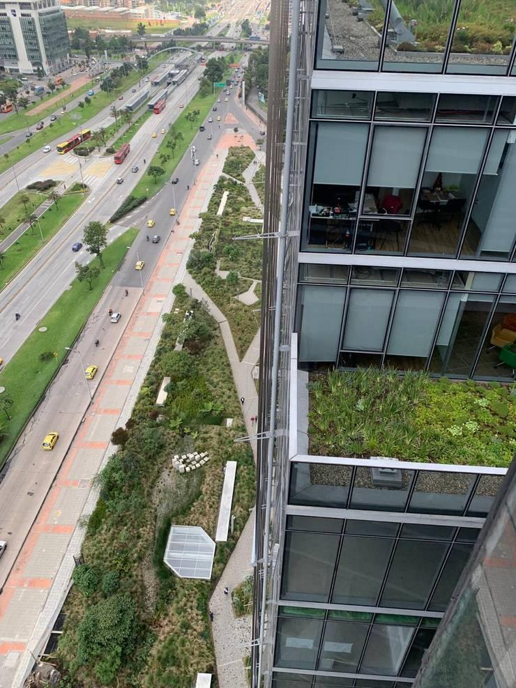 Techos Verdes del Edificio Elemento: Techos planos de estilo  por Helecho SAS