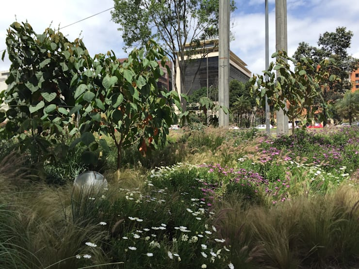 Humedales del Edificio Elemento: Jardines frontales de estilo  por Helecho SAS
