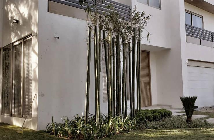 Front yard by Sakina Interiorismo, Modern