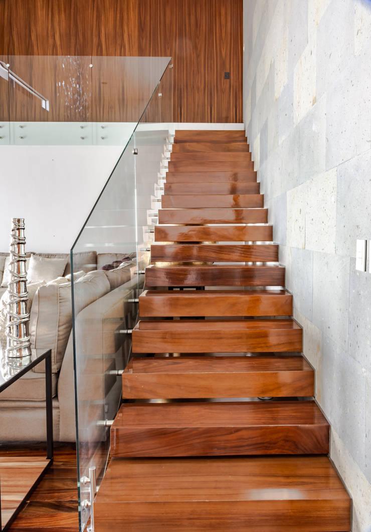 ESCALERAS: Escaleras de estilo  por GENETICA ARQ STUDIO, Moderno Madera Acabado en madera