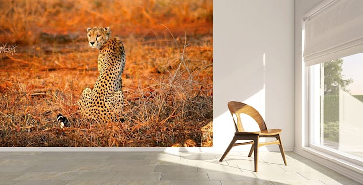 Leopard Safari:  Office spaces & stores  by United wallcoverings,