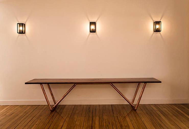 Mesa CObre-Coihue: Centros de exhibiciones de estilo  por Intarq SpA