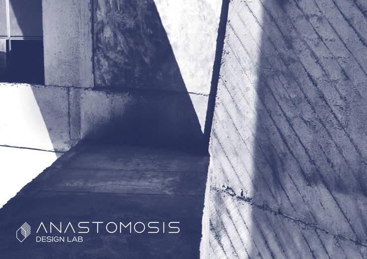 ANASTOMOSIS DESIGN LAB:   تنفيذ Anastomosis Design Lab
