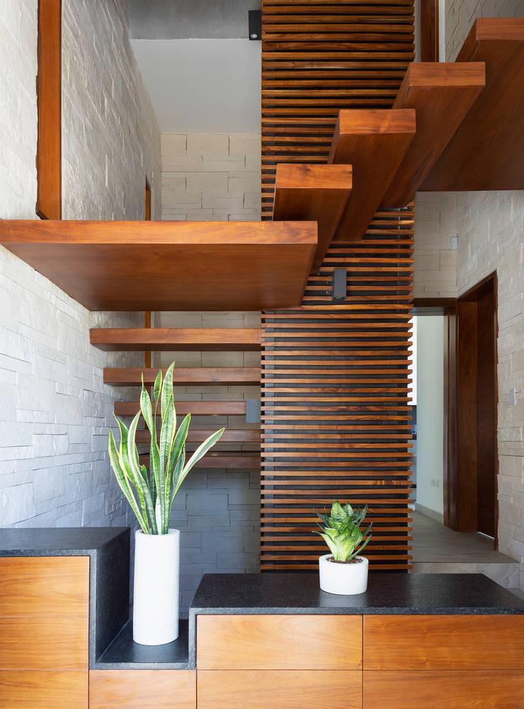 Stairs by Daniel Cota Arquitectura | Despacho de arquitectos | Cancún, Modern Wood Wood effect