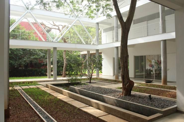 Garden by imago architecture+design, Modern