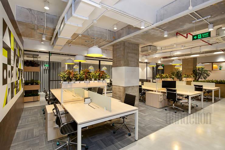 Thiết Kế Thi Công Nội Thất Văn Phòng BESPOKIFY FASHION-TECH ĐÀ NẴNG 2:  Văn phòng & cửa hàng by Dandelion Design Construction,