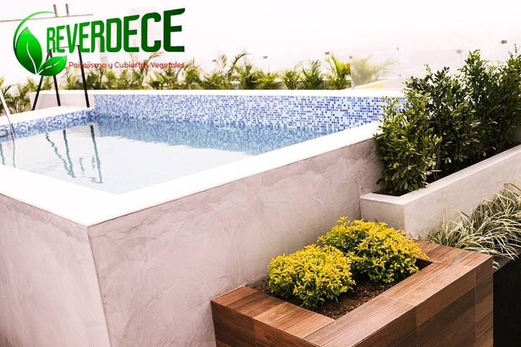 Jardines en la fachada de estilo  por REVERDECE PERU SAC,
