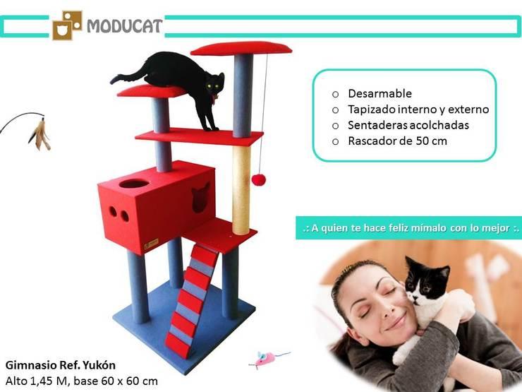 de style  par ModuCat Estructuras modulares para gatos, Moderne Bois Effet bois