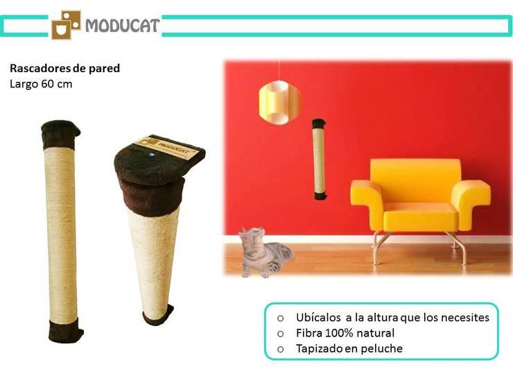 Rascadores para gato, para pared: Hogar de estilo  por ModuCat Estructuras modulares para gatos,