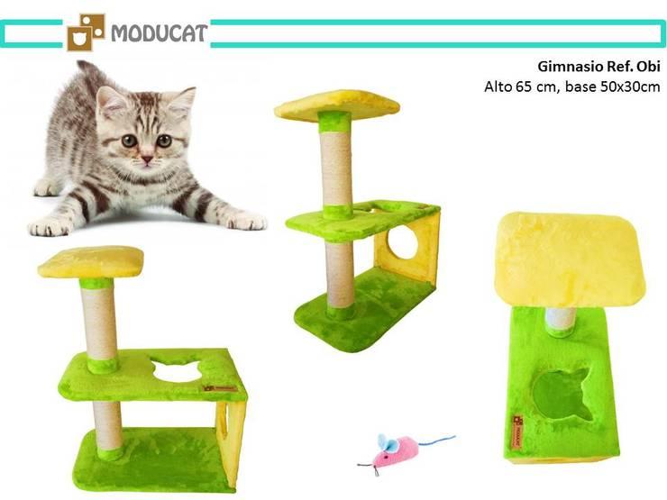 Gimnasio para gatos, referencia Obi: Hogar de estilo  por ModuCat Estructuras modulares para gatos,