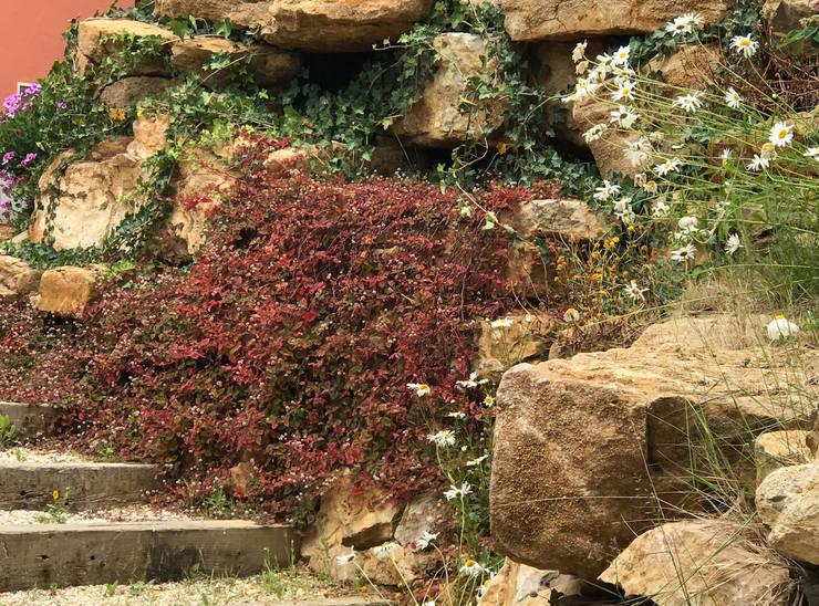 Talude: Jardins  por Maria Mayer | Interior & Landscape Design,