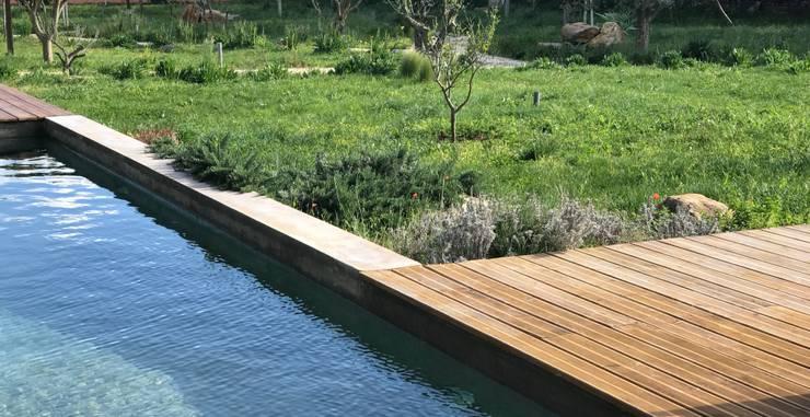 Ponto de água para os insectos: Piscinas  por Maria Mayer | Interior & Landscape Design,