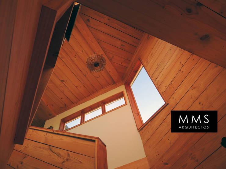 Casa Molle : Escaleras de estilo  por MMS Arquitectos, Moderno Madera Acabado en madera