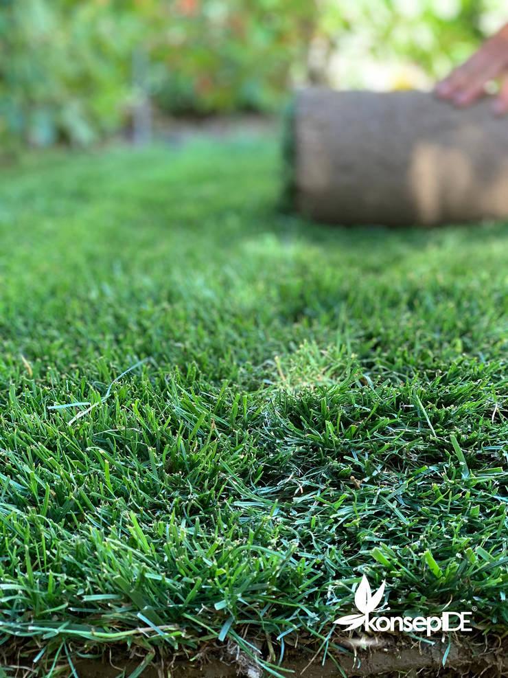 konseptDE Peyzaj Fidancılık Tic. Ltd. Şti. – N.G Konutu Hazır Rulo Çim Uygulaması & Otomatik Sulama Sistemi:  tarz Bahçe,