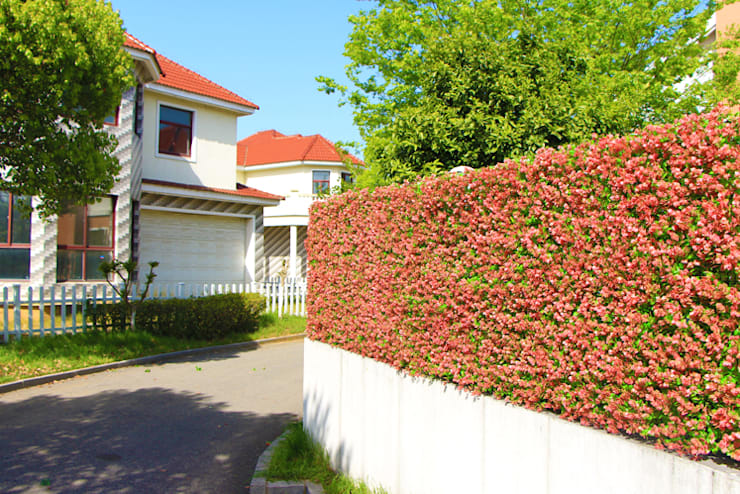 Cover the Fence with Artificial Privacy Hedge:  Walls & flooring by Ulandhedge,