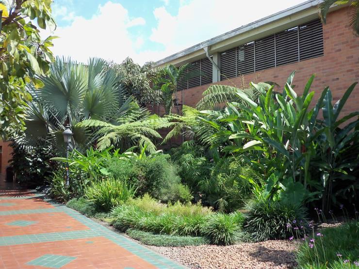 jardin Fábrica Moldes Medellín: Estanques de jardín de estilo  por Paisajismo trópico sas,