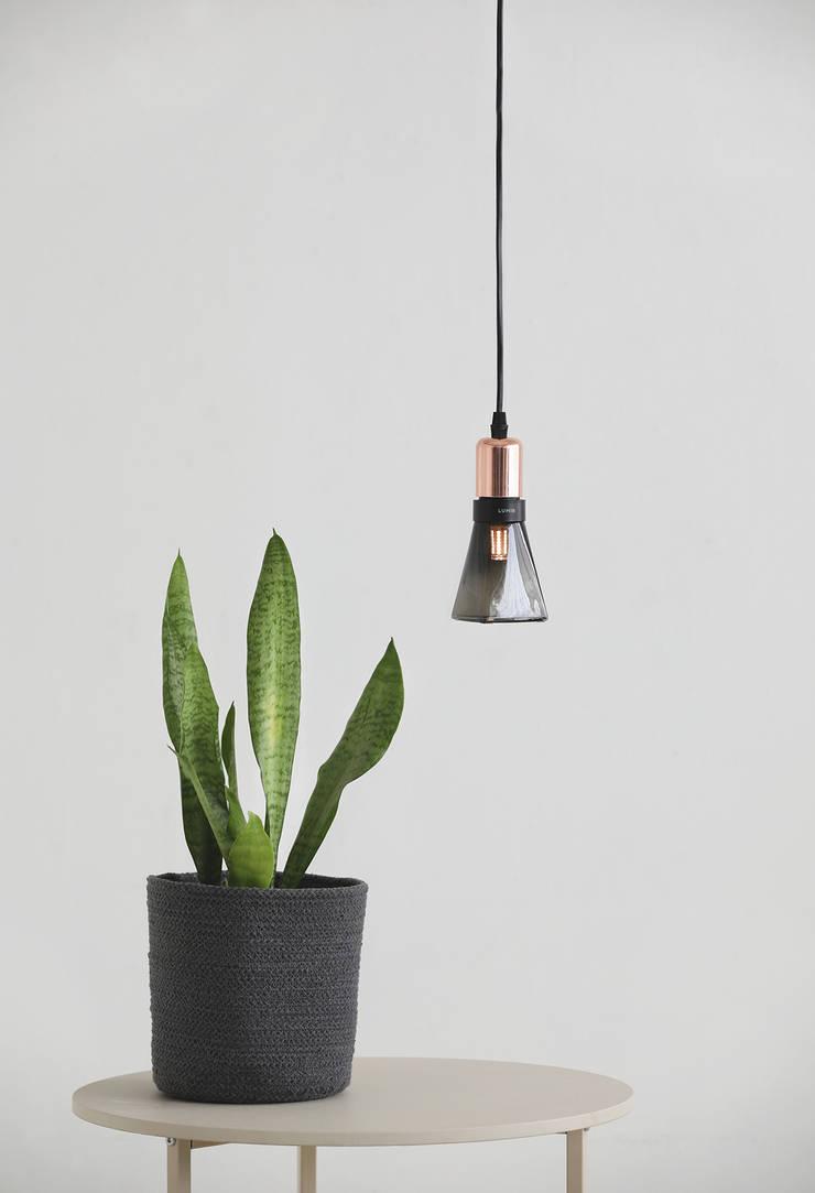 루미르B 디자인 LED 전구 : 주식회사 루미르의 현대 ,모던 유리