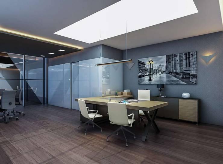 VERO CONCEPT MİMARLIK – Şahin Hukuk Bürosu:  tarz Ofis Alanları, Modern