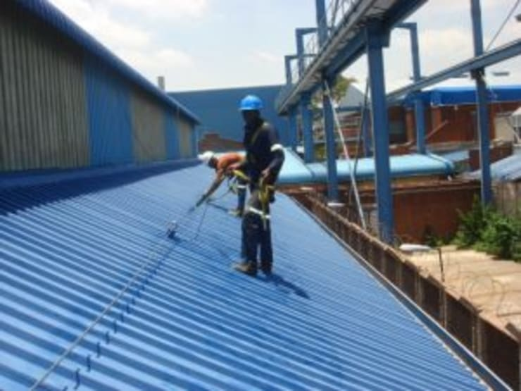 Roof Painting by Design Waterproofing Systems Industrial