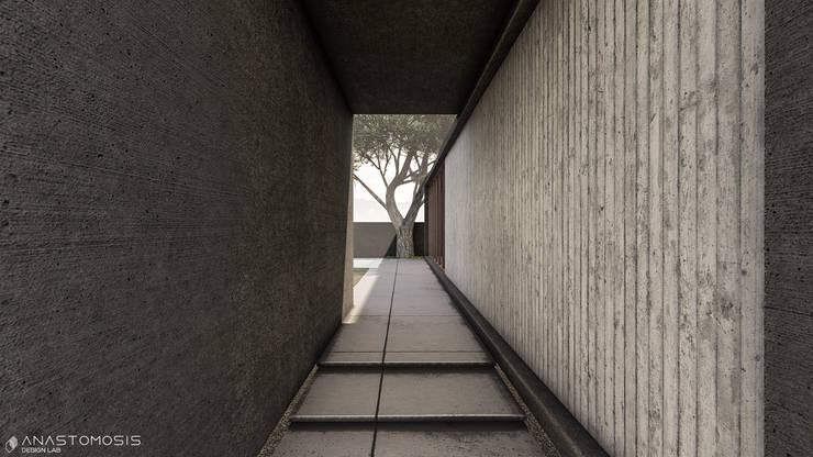 Pasillos, vestíbulos y escaleras de estilo minimalista de Anastomosis Design Lab Minimalista