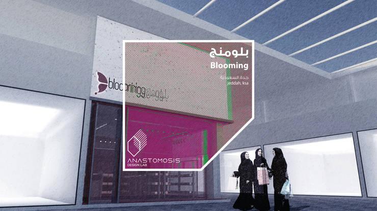 عنوان المشروع Cover Page: الحد الأدنى  تنفيذ Anastomosis Design Lab, تبسيطي