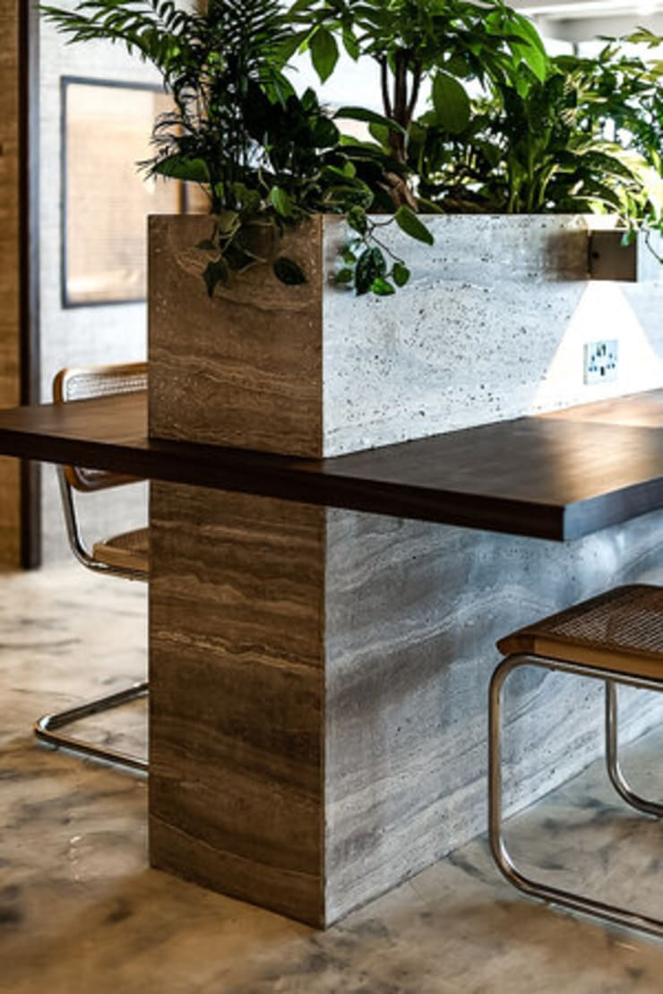 PLANTER :  Offices & stores by S.Lo Limited, Classic Stone