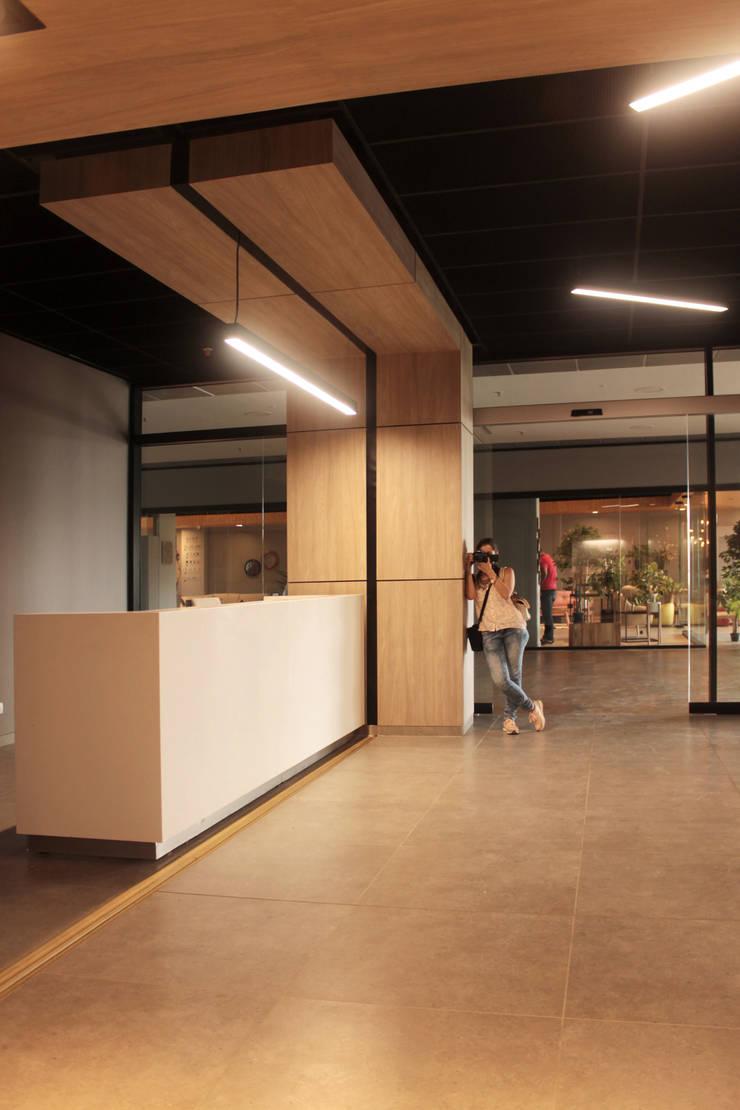 PLACES: Oficinas y Tiendas de estilo  por BASSICO ARQUITECTOS, Moderno Madera Acabado en madera