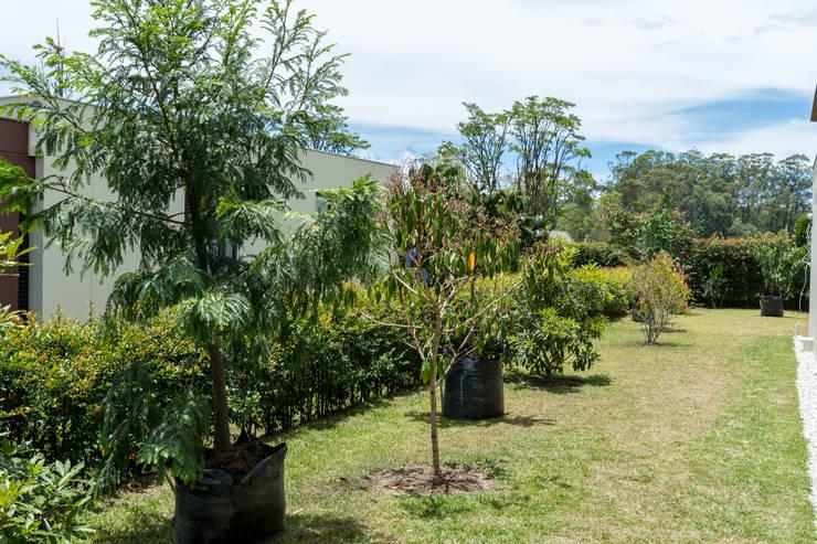 Bosque Nativo Jardines de estilo rural de TERRA Prados y jardines Rural