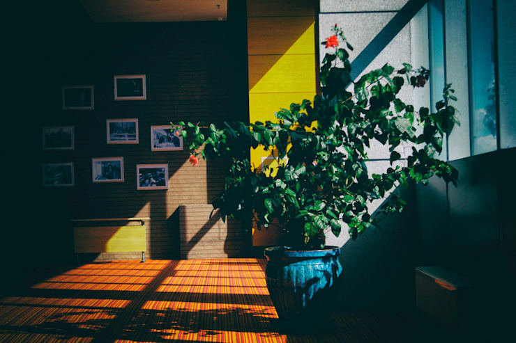Interiors Designs: حديث  تنفيذ  شركة تشطيبات شقق / فيلات / قصور Houzz Egypt, حداثي
