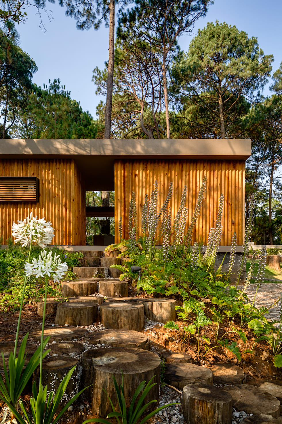 8 Homes That Co-Exist With Nature