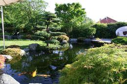 Kompletter Garten in Freiburg: moderner Garten von Kirchner Garten + Teich GmbH