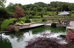 Mares et étangs de style  par Kirchner Garten + Teich GmbH