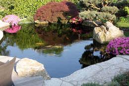 Jardin de style de style Moderne par Kirchner Garten + Teich GmbH